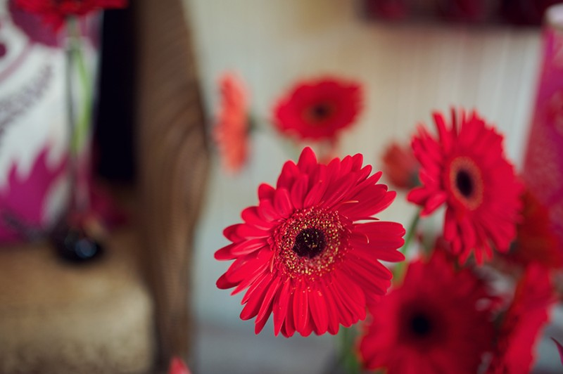 Flowers-by-SP-Retail-Photography-by-Rebecca-Douglas-Photography-0019