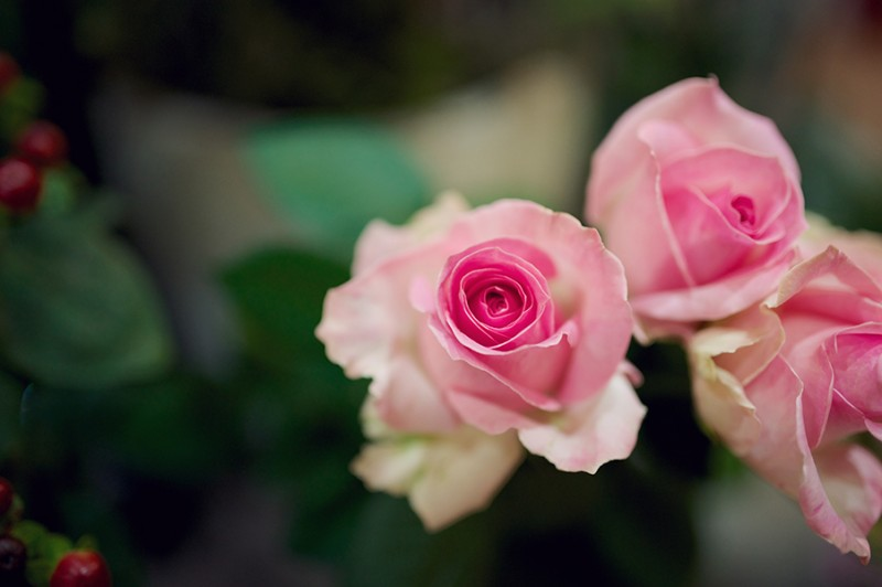 Flowers-by-SP-Retail-Photography-by-Rebecca-Douglas-Photography-0069